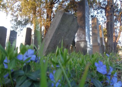 Tombstones at the old jewish cementery