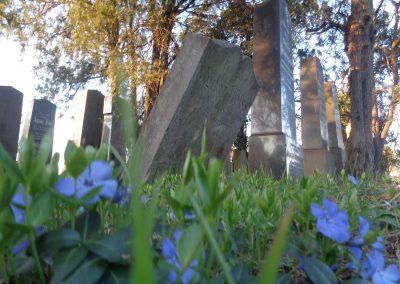 Grabsteine am alten jüdischen Friedhof